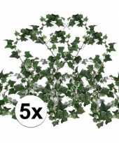 5x klimop slinger hedera helix 180 cm