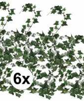 6x klimop slinger hedera helix 180 cm