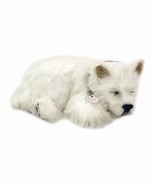 Ademende knuffel hond westie