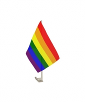 Autovlaggen lgbt regenboog