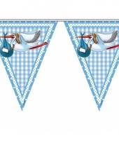 Baby jongen geboorte vlaggetjes