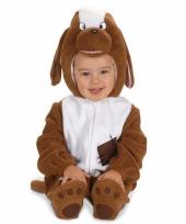 Baby kostuum van een hond