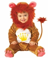 Baby kostuum van een leeuw