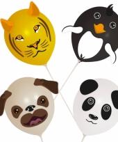 Ballonnen dieren setje