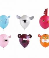 Ballonnen van dieren 6x