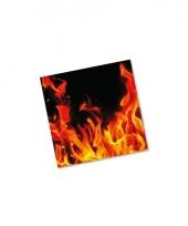 Barbecue servetten met vuur 20 st