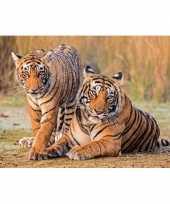 Borden onderlegger 3d tijger 10131056