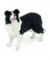 Border collie schapendrijver speel hond
