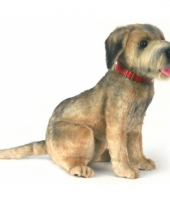 Border terrier hondje 44 cm