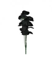 Bosje zwarte rozen 12 stuks