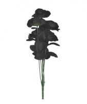 Bosje zwarte rozen 6 stuks