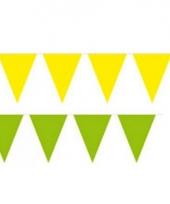 Braziliaanse kleuren vlaggenlijnen