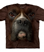 Brown boxer face shirt the mountain