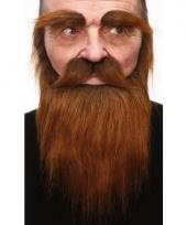 Bruine baard snor en wenkbrauwen
