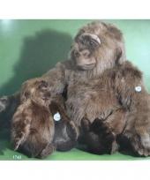 Bruine pluche gorilla 80 cm