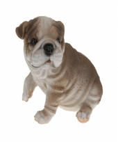 Bulldog beeldje zittend 13 5 cm type 3
