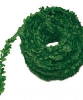 Buxus slinger groen 30 meter