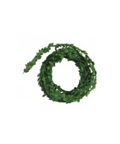 Buxus slinger groen 5 meter