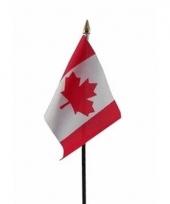 Canadese landenvlag op stokje