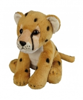 Cheetah knuffeldieren 19 cm