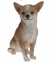 Chihuahua beeldje beige 22 cm
