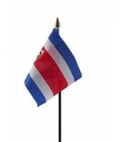 Costa ricaanse landenvlag op stokje