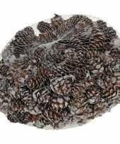 Decoratie dennenappels bruin sneeuw 3 cm