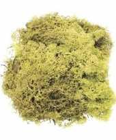 Decoratie mos lichtgroen 50 gram