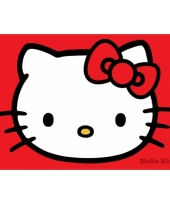 Decoratie poster hello kitty 61 x 91 5 cm