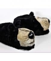 Dieren sloffen zwarte beer