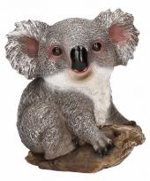Dierenbeeld koala 20 cm