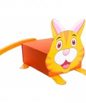 Doe het zelf kat suprise maken pakket