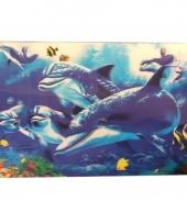 Dolfijnen placemats en onderzetters