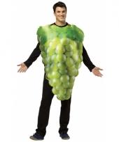 Druiven kostuum voor volwassenen