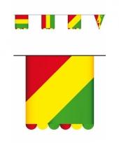 Dubbelzijdige vlaggenlijn carnaval 3 meter