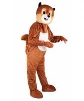 Eekhoorn kostuum voor volwassen met groot masker