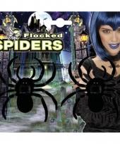 Enge grote spinnetjes 2 stuks