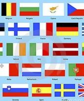 Europese unie decoratie pakket