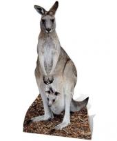 Foto bord van een kangoeroe