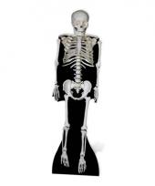 Foto bord van een skelet