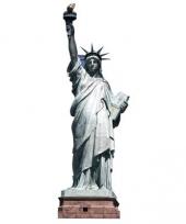 Foto bord van het vrijheidsbeeld