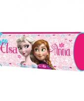 Frozen pennenzakje roze 20 cm