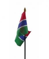Gambische landenvlag op stokje