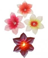 Gekleurd bloemetje broche met licht