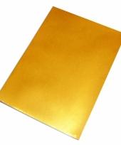 Gekleurd hobby papieren goud a4