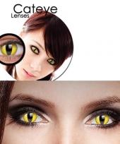 Gele katten ogen kleurlenzen