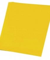 Gele vellen karton 48x68 cm