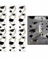 Geslaagden ophangdecoratie 183 x 30 cm 3 stuks