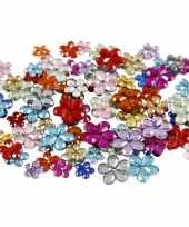 Glinster steentjes assorti bloemetjes 504 stuks