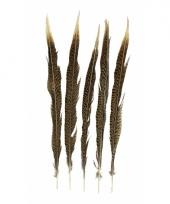 Goudfazant veren 38 cm 5 stuks